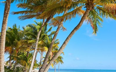 Key West Conversion: A Race Against the Clock
